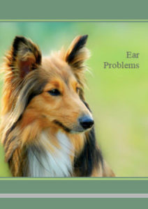 Ear Problems eBook - Brookfield Veterinary Surgery